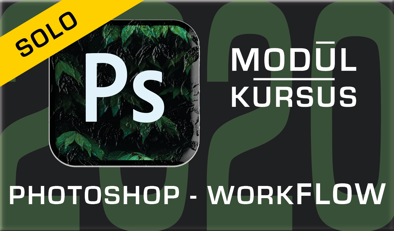 PSD_solo workflow